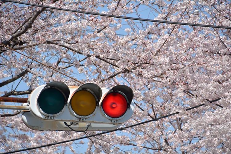 ただいま春の交通安全習週間中です!