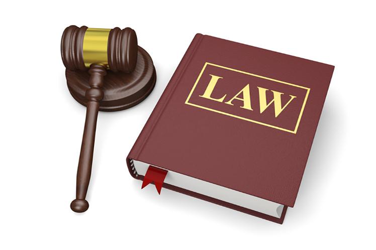 日本弁護士連合会の活動